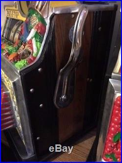 Watling Bird Of Paradise Roll A Top Slot Machine Birds Are Very Hard To Find